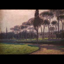 Pine Trees by Villa Borghese in Rome